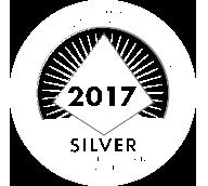 Silver PBIS Implementation
