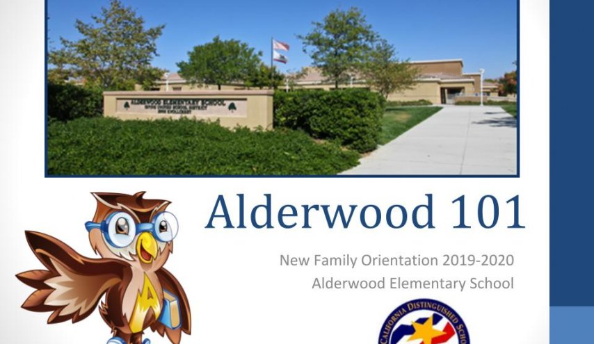 Alderwood 101